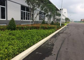 Nhận chăm sóc cây xanh, cảnh quan sân vườn